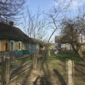 Продается дом в деревне Белевичи